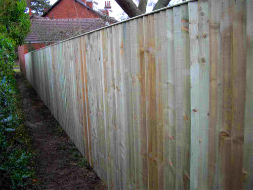Feather Edged Board Fence